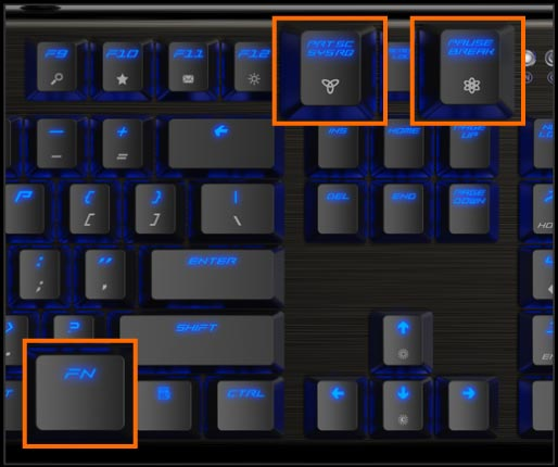 ThunderX3 TK50 Mechanical Gaming Keyboard